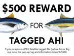Ahi Tagging reward poster-thumb